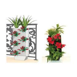 Kit clôture végétal avec pied 1 face 6 plantes 87x33cm - C-green