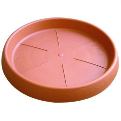 Coupelle ronde 25cm x 10pcs