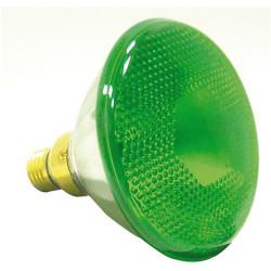 Lampe verte E27 80W -regarder les plantes la nuit