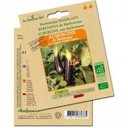 Graines bio Aubergine de barbentane - La semence bio