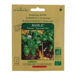 Semillas orgánicas de Albahaca, Genovese - de semillas orgánicas
