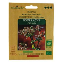 Graine bio Bourrache officinale - La semence bio