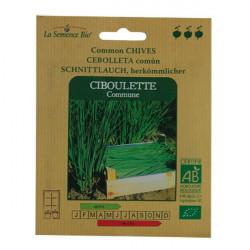 Graines CIBOULETTE COMMUNE - La Semence Bio
