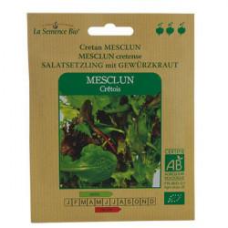 Las semillas de MEZCLUM de CRETA - la Semilla Orgánica