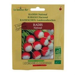 Graines bio Radis National - La Semence Bio