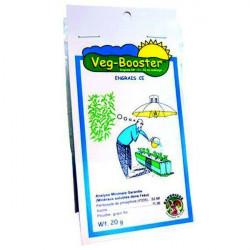 VEG Booster 20g - Rambridge booster de croissance terre hydro coco