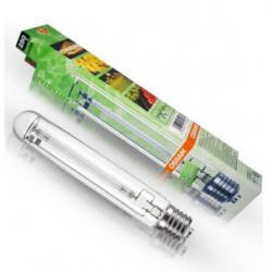 Ampoule Sodium hps 250 W Plantastar osram 30% Bleu E40