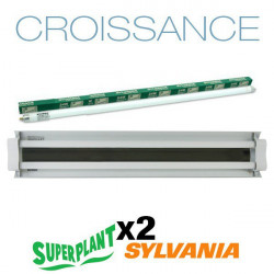 Rampe néon Croissance T5HO 4x24W 6500K Plug and Play - Superplant & Sylvania
