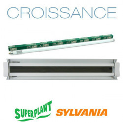 Rampe néon Croissance T5HO 2x24W 6500K Plug and Play - Superplant & Sylvania