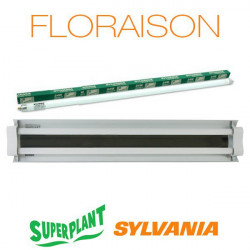 Rampe néon Floraison T5HO 2x24W 3000K Plug and Play - Superplant & Sylvania