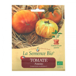 Graines Bio - Tomate Ananas 20gn - La Semence Bio