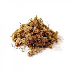 Musgo Sphagnum de Chile - Bolsa de 250 g