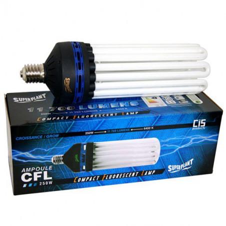 Ampoule CFL Superplant 250W 6400K - Croissance