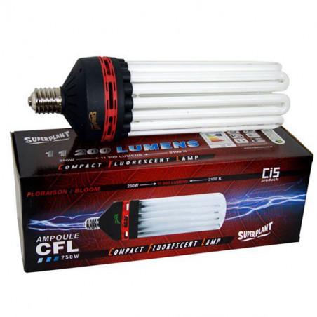 Ampoule CFL Superplant 250W 2100K Floraison