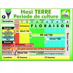 Schéma de culture Hesi - Terre