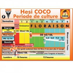 Schéma de culture Hesi - Coco