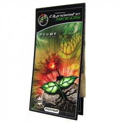 Dynamite Seeds 1g - Stimulateur pour graines - Platinium