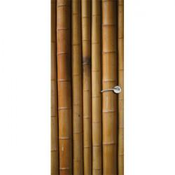 Tuteur bambou plastifiée 60 cm