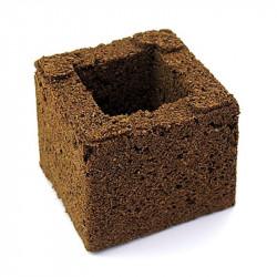 Eazy Bloque de cubos de la cultura 7.5x7.5x6cm - Eazy Plug