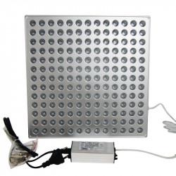 Panel Grow Light 46W - 27.6x27.6x1.4cm - IndoorLed