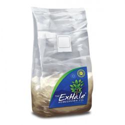 Générateur de CO2 ExHale - EasyGrow LTD