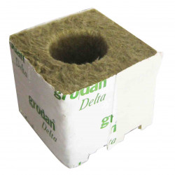 Los cubos de lana de roca de 100x100x65 por 10 Ø40/35mm - Grodan