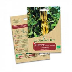 Haricot beurre grimpant Neckargold - 75 gr - La Semence Bio