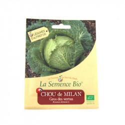 Graines bio - Chou de Milan Gros des Vertus 250 gn - La Semence Bio
