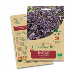BASILIC ROUGE OSMIN 150 graines - La Semence Bio