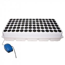 Système aéroponique DWC Cloner 84 boutures Blanc - Platinium