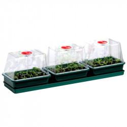 Trío de mini invernaderos rígido - 76 x 18.5 x 20,5 cm - Guirnalda de germinación-esquejes
