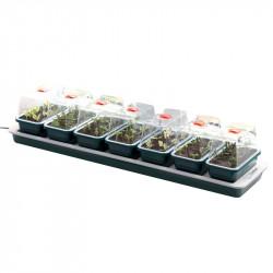 7 mini serres chauffantes Super 7 - 76 x 18,5 x15 cm - Garland germination-bouturage