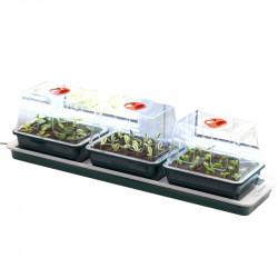 Trio de serres chauffantes - 76 x 18 x 20,5 cm - Garland germination-bouturage