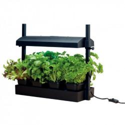 Micro jardin noir avec lampe 11W - Garland potager cuisine et salon