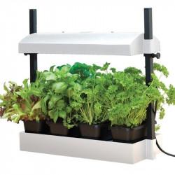 Mini jardin blanc avec lampes 2x24W - Garland potager cuisine et salon