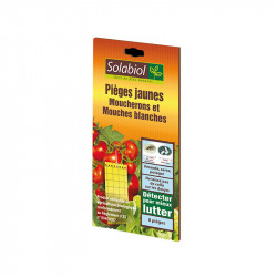 Pièges jaunes pour moucherons et mouches blanches - Solabiol