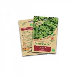 Graines bio Basilic Citron - La Semence Bio