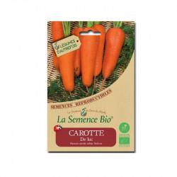 Orgánico de semillas de Zanahoria de Lucas - La Semilla Orgánica
