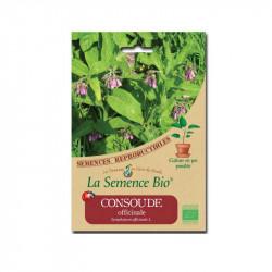 Graines bio Consoude officinale - La semence Bio