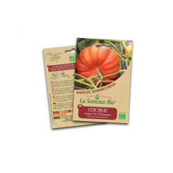 Orgánico de semilla de Calabaza, de color rojo brillante Etampes - de Semillas Orgánicas