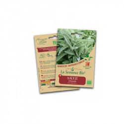 Graines bio Sauge Officinale - La Semence Bio