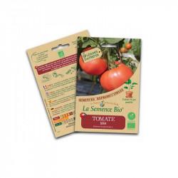 Graines bio Tomate 1884 - La Semence Bio