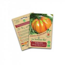Graines bio Tomate Albenga rouge ou Liguria - La Semence Bio