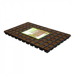 Plaque de 77 cubes de germination pour semis et bouture - Eazy Plug