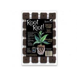 Enchufe Root riot x 24 - esquejes - germinación - el Crecimiento de la tecnología
