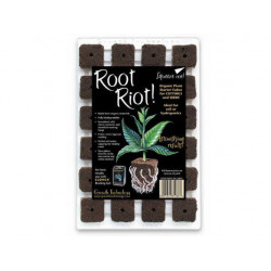 Plug Root riot x 24 - bouturage - germination - Growth technology