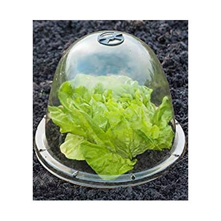 Nature - Cloches avec ventilation H 20 X Diam 255 mm
