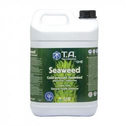 Hace bio-estimulante de la floración IR Algas marinas - 5L - GHE
