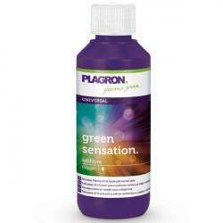 Plagron Green sensation 100 ml booster de floraison -terre-hydro-coco