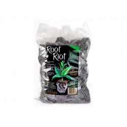Root Riot - enchufe de recortes de la germinación de la x100 plug-el crecimiento de la tecnología
